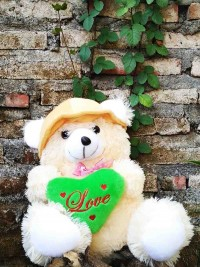 Jual Boneka Teddy Bear Love