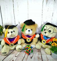 teddy bear wisuda
