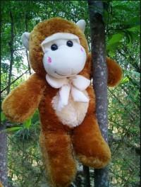 jual boneka monyet besar jual boneka monyet murah jual boneka monyet kaskus jual boneka monyet yoyo cici jual boneka monyet lucu harga boneka monyet besar harga boneka monyet jumbo harga boneka monyet lucu