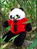 Jual Boneka Panda Warna Merah Lucu ukuran sedang
