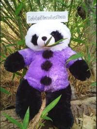 Jual Boneka Panda Warna Ungu, jual boneka panda ukuran sedang