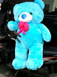 Boneka Teddy Bear Giant Warna Biru