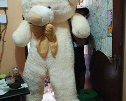 Jual Teddy Bear Ukuran 2 Meter Super Jumbo