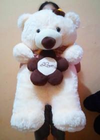 boneka-bear-bunga-krem