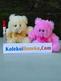 boneka-teddy-bear-rasfur