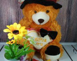 Bear topi koboy