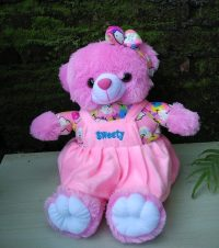 Boneka Bear Sweet Pink