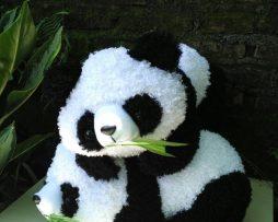 jual boneka panda
