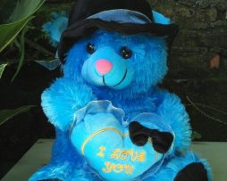 jual boneka teddy bear topi katun