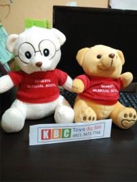 souvenir boneka teddy bear ukuran 25cm