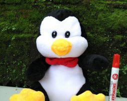 Jual Boneka Pinguin