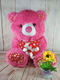 Boneka Teddy Bear Kado fanta