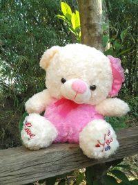 http://koleksiboneka.com/wp-content/uploads/2018/02/Teddy-bear-pompom-snail.jpg