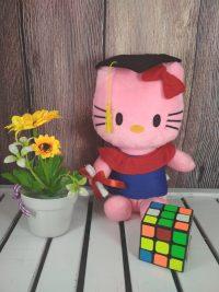 http://koleksiboneka.com/wp-content/uploads/2018/04/Hello-kitty-Wisuda.jpg