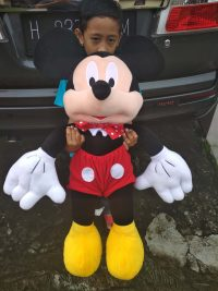 Mickey Mouse rev
