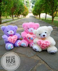 BONEKA BEAR LOVE HUG 25 CM