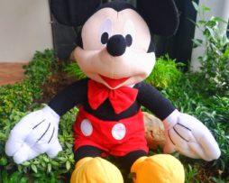 Mikky-Mouse-XL