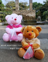 boneka teddy bear kantong tile