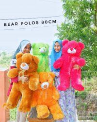 teddy bear polos