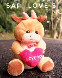 Sapi-Love-S