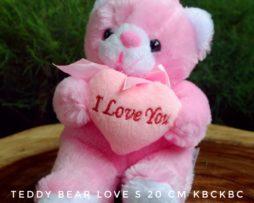 BEAR-LOVE-S