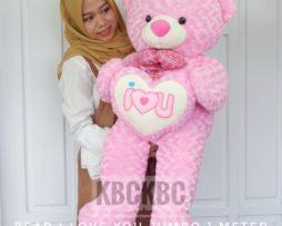 bear-i-love-you-jumbo-4