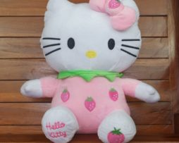 hello-kitty-buah-4
