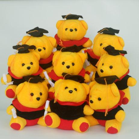 Wisuda-Mini-Pooh