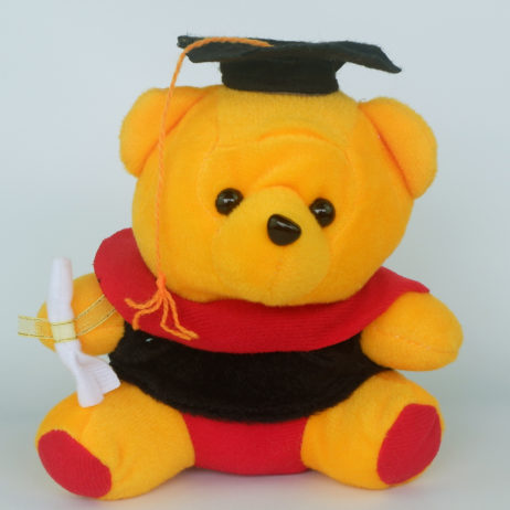 Wisuda-Mini-Pooh2