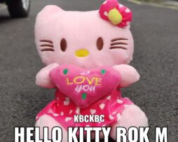 http://koleksiboneka.com/wp-content/uploads/2020/11/HELLO-KITTY-ROK-M.jpeg