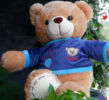 http://koleksiboneka.com/wp-content/uploads/2020/11/Teddy-Bear-Happy-Coklat.jpg