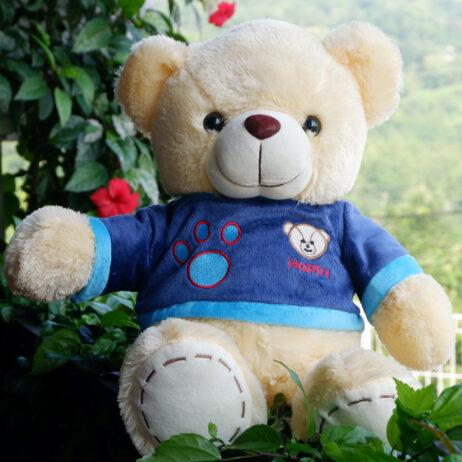 http://koleksiboneka.com/wp-content/uploads/2020/11/Teddy-Bear-Happy-Krem.jpg