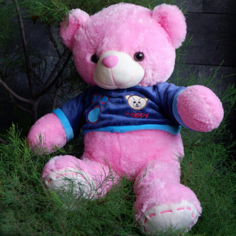 http://koleksiboneka.com/wp-content/uploads/2020/11/bear-happy-pink.jpg