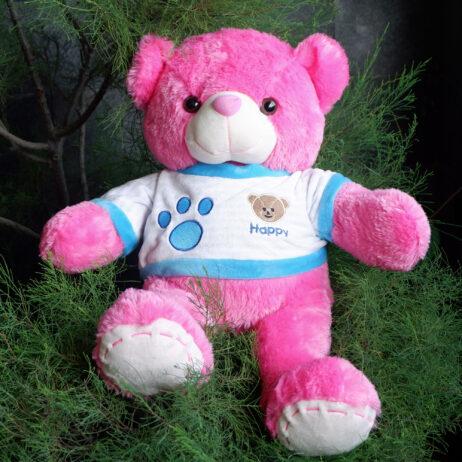 http://koleksiboneka.com/wp-content/uploads/2020/11/bear-happy-pink-fanta.jpg