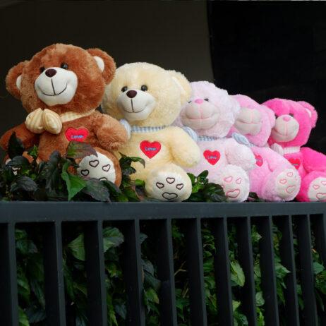 http://koleksiboneka.com/wp-content/uploads/2020/11/bear-syal-love-5-warna.jpg