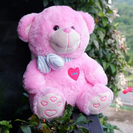 http://koleksiboneka.com/wp-content/uploads/2020/11/bear-syal-love-pink.jpg