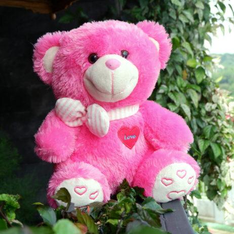 http://koleksiboneka.com/wp-content/uploads/2020/11/bear-syal-love-pink-FANTA.jpg
