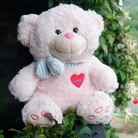 http://koleksiboneka.com/wp-content/uploads/2020/11/bear-syal-love-pink-Soft.jpg