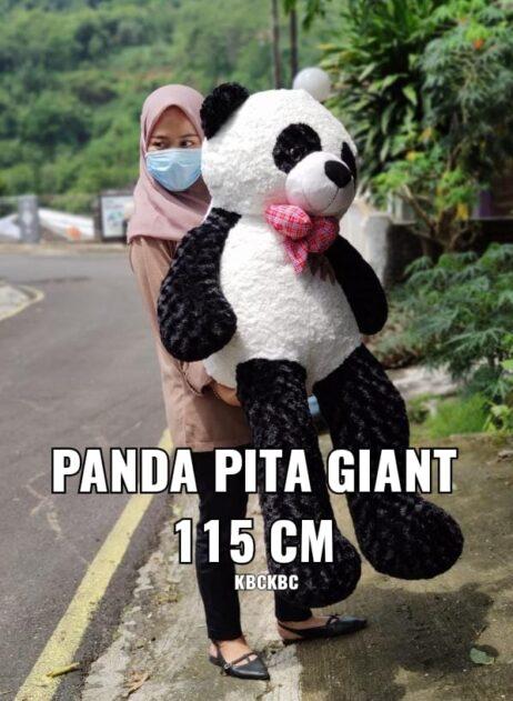 PANDA-PITA-GIANT-1