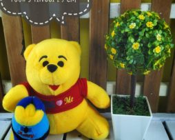 winni the pooh baju s