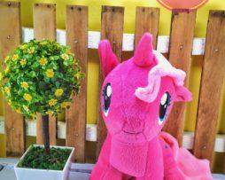 Little pony (2)