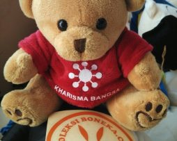 souvenir boneka teddy bear kualitas eksport