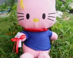 boneka-wisuda-hello-kitty