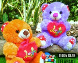 Boneka Teddy Bear Telapak L