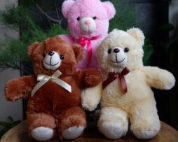 http://koleksiboneka.com/wp-content/uploads/2020/11/Bear-Pita-Size-S.jpg