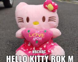 http://koleksiboneka.com/wp-content/uploads/2020/11/HELLO-KITTY-ROK-M.jpeg
