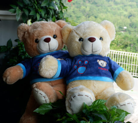 http://koleksiboneka.com/wp-content/uploads/2020/11/Teddy-Bear-Happy2.jpg