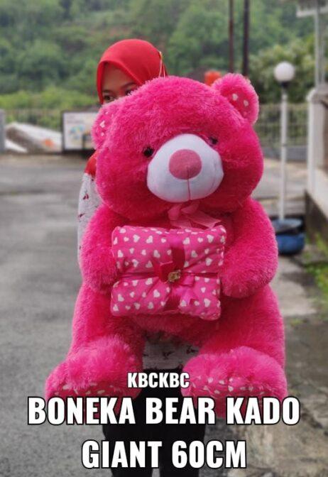 http://koleksiboneka.com/wp-content/uploads/2020/11/Teddy-Bear-kado-giant-.jpeg