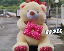 http://koleksiboneka.com/wp-content/uploads/2020/11/Teddy-Bear-kado-giant-2.jpeg