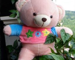 http://koleksiboneka.com/wp-content/uploads/2020/11/bear-baju-bunga.jpg